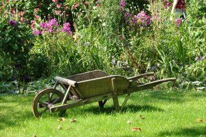 """Lecture contée de """"l'Année du Jardinier"""" (adultes)"""